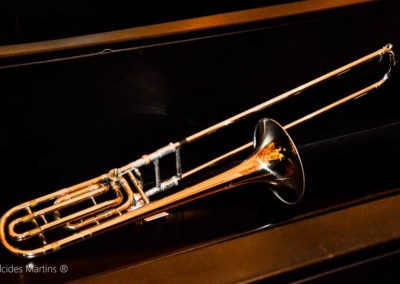 delfim-moreira-coral-e-orquestra-galeria-fotos-21